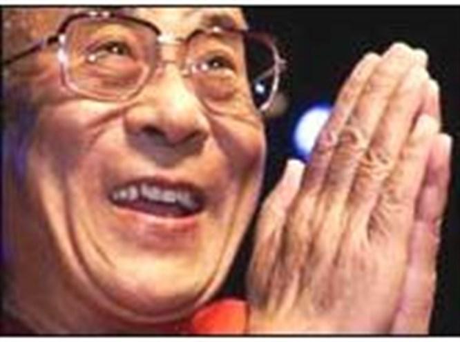 Dalay Lama'ya sivrisinek sınavı